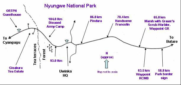 Nyungwe National Park