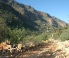 Road through Wadi Ayhaft National Park. Socotra, Yemen.