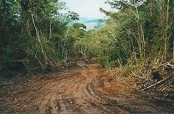 Boa Nova Bahia fonte: www.worldtwitch.com
